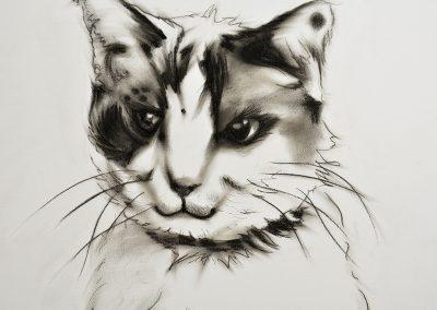 cat painting close up